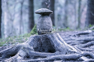 Wood carving of a mushroom in a forest - Bavaria