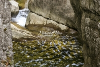 Nature Photography; Art;Landscape; Waterfalls; Water; Bavaria; Rocks; Water Forms