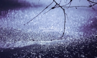 Nature Photography; Art; Landscape; Water; Waterdrops Germany; Bavaria; Water Forms